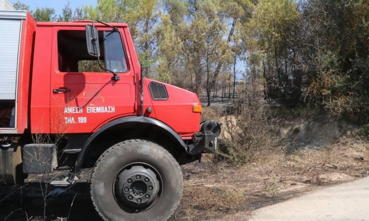 Ο χάρτης πρόβλεψης κινδύνου πυρκαγιάς για την Τρίτη (1/9)