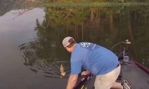 Πήγε για ψάρεμα και ... έπιασε δύο γάτες (video)