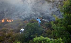 Σε ύφεση η φωτιά στον Αετό Μεσσηνίας - Υπό έλεγχο αυτή στην Κορώνη