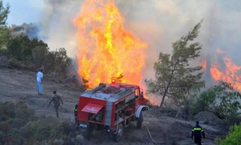 Μεγάλη πυρκαγιά στο Ελληνικό Γορτυνίας - Ενισχύονται οι πυροσβεστικές δυνάμεις