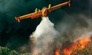 «Συναγερμός» στην Πυροσβεστική - Μεγάλη φωτιά στη Βοιωτία