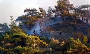 Υπό μερικό έλεγχο η φωτιά στο Ακόντιο Βοιωτίας