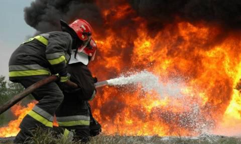 Λεμεσός: Υπό έλεγχο η πυρκαγιά - Κίνδυνος αναζωπύρωσης