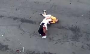 Σκληρές εικόνες: Τσακώθηκαν και άφησε τα πίτμπουλ της να τον κατασπαράξουν (video)