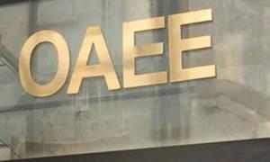 OAEE: Στις 21 Σεπτεμβρίου η καταβολή δόσεων για τη ρύθμιση οφειλών