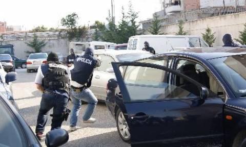 Αλβανία: Κατάσχεση φυτών κάνναβης αξίας 7 δισ. ευρώ μέσα σε 9 μήνες