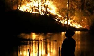 Καλιφόρνια: Ένας νεκρός και εκατοντάδες καμένες οικίες από τις καταστροφικές πυρκαγιές