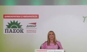 Εκλογές 2015 - Γεννηματά: Ο Μεϊμαράκης παριστάνει το λύκο που έγινε αρνάκι (photos+vid)