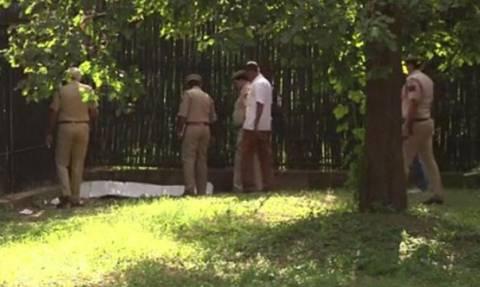 Πολωνία: Τίγρης κατασπάραξε το φροντιστή της σε ζωολογικό κήπο (video)