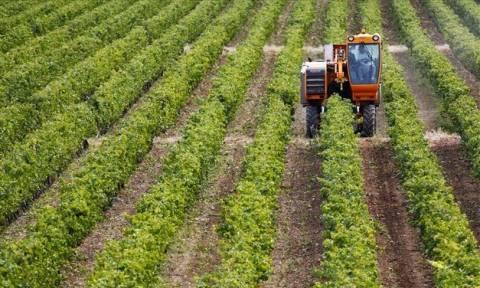 Με 2,3 εκατ. ευρώ ενισχύεται ο ελληνικός αγροτικός τομέας