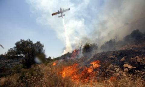 Ξάνθη: Μάχη των πυροσβεστών με τη φωτιά στην Πάχνη