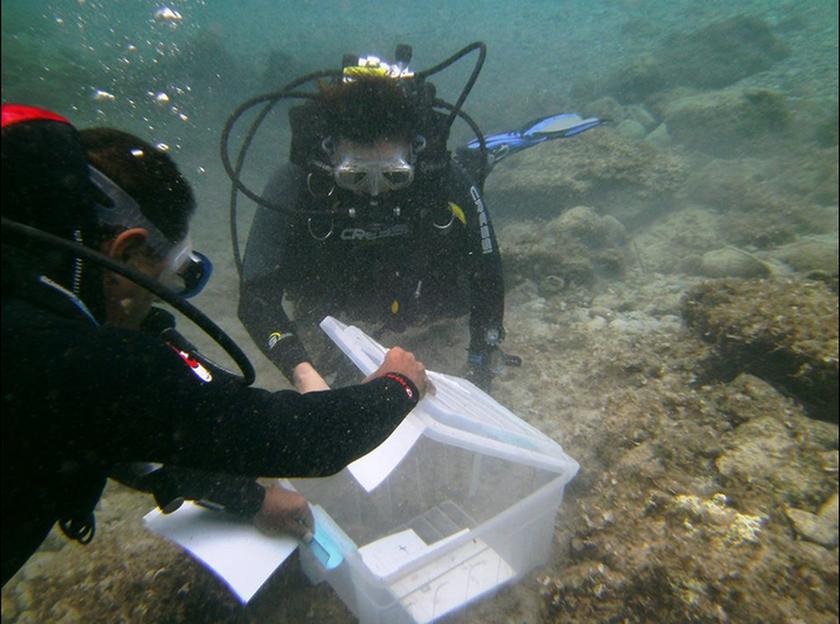Σάμος: Οι πρώτες υποβρύχιες εκλογές στην Ελλάδα! (pics)