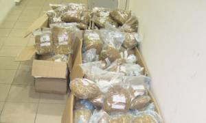 Πάτρα: Συνελήφθη 43χρονος με περισσότερα από 163 κιλά λαθραίου καπνού