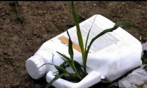 Τυμπάκι Ηρακλείου: Με φυτοφάρμακο αυτοκτόνησε ο ηλικιωμένος αγρότης