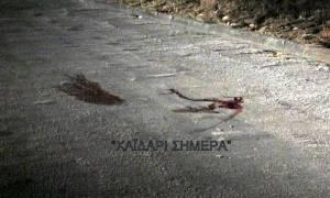 «Άγριο» έγκλημα στο Χαϊδάρι