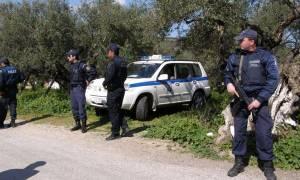 Τριάντα εννέα συλλήψεις σε αστυνομική επιχείρηση στην Πελοπόννησο