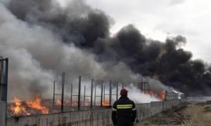 Πυρκαγιά σε εργοστάσιο επίπλων στη Μάνδρα