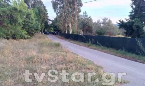 Φθιώτιδα: Βρέθηκαν καλάσνικοφ στην αγροικία - κρησφύγετο του Πετρακάκου
