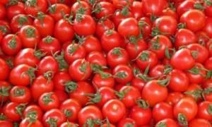 Καταγγελία για παράνομη εισαγωγή 16 τόνων ντομάτας από την Τουρκία στη Κύπρο