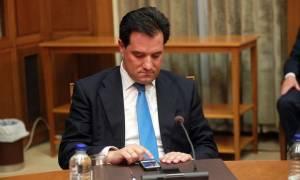 Γεωργιάδης: Να μη γίνει διαχωρισμός παλαιών και νέων μελών της ΝΔ