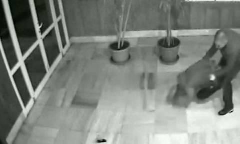 Σοκαριστικό βίντεο: Κανίβαλος επιχείρησε να του φάει το πρόσωπο!