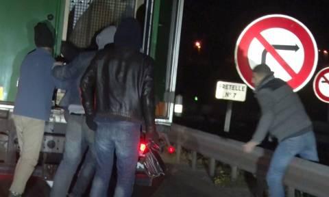 Μετανάστες μπήκαν «παράνομα» στο πίσω μέρος φορτηγού και ήρθαν τετ α τετ με πολική αρκούδα (video)