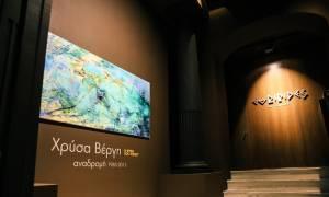 Χρύσα Βέργη - «Η Ψυχή του Τοπίου -Αναδρομή 1985-2015»