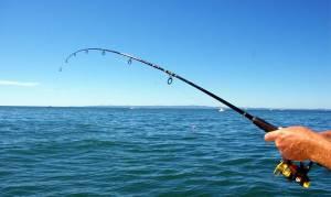 Δείτε την ψαριά που άφησε άφωνη… την Πρέβεζα (photo)