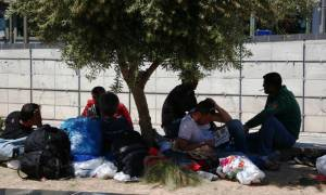 Ρεκόρ αφίξεων προσφύγων σε Λέσβο, Χίο και Μυτιλήνη - Πέρασαν 9.763 σε ένα 24ωρο