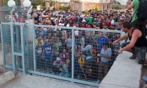 Τουλάχιστον 500.000 πρόσφυγες έφτασαν στην Ελλάδα το 2015