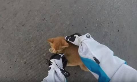 Μηχανόβια σώζει γατάκι από βέβαιο θάνατο (video)