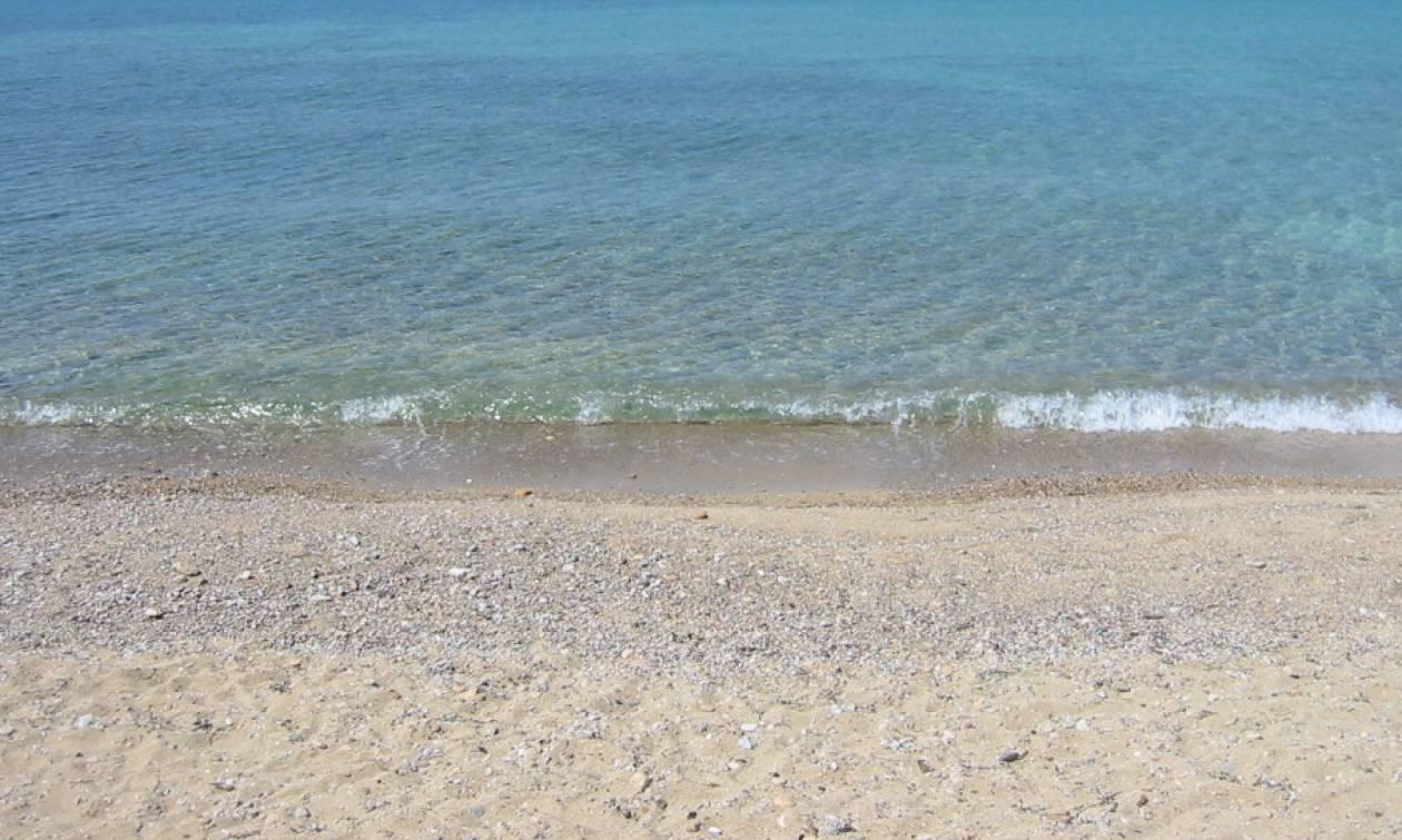 Το εύρημα που τάραξε την παραλία του Ακτίου (photos)