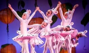 Η Πεντάμορφη & το Τέρας από το Athens Children's Ballet στο Θέατρο στο ACS