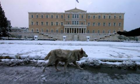 Το Ελ Νίνιο χτυπά και την Ελλάδα - Έρχεται ο πιο βαρύς χειμώνας (vid)