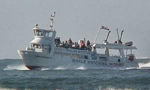 Καναδάς: «Το πλοίο βυθίστηκε πριν καν το πλήρωμα προλάβει να στείλει σήμα κινδύνου» (video)