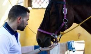 Θεραπευτική Ιππασία-Pet Therapy