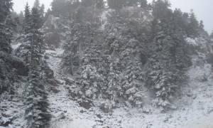Άσπρισε ο Παρνασσός - Ήρθαν τα πρώτα χιόνια (photos)