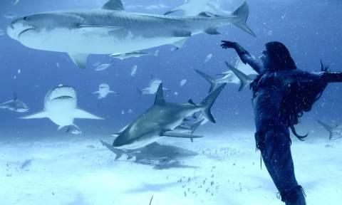 Θα χορεύατε με καρχαρίες; Αυτή η γυναίκα το έκανε! (video)