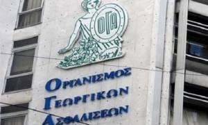 ΟΓΑ: Στο «μικροσκόπιο» 60.000  αιτήσεις δικαιούχων οικογενειακών επιδομάτων