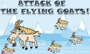 Κατσίκια αναγκάζουν αεροπλάνο να προσγειωθεί για έναν απίστευτο λόγο