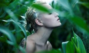 Η L'Oréal αναγνωρίστηκε από το CDP ως κορυφαία εταιρεία στην καταπολέμηση της κλιματικής αλλαγής