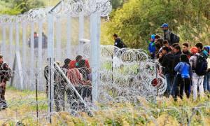 Η Σλοβενία υψώνει… εμπόδια για τους πρόσφυγες στα σύνορα