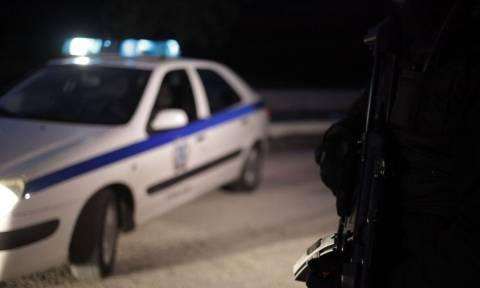 Στα χέρια της Αστυνομίας ο αρχηγός της σπείρας που δολοφόνησε τον εστιάτορα στην Ύδρα
