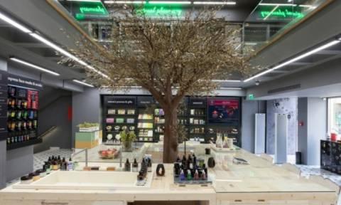 Η APIVITA συνεχίζει το ταξίδι της στον κόσμο - Δύο νέα καταστήματα σε Λευκωσία και Άμστερνταμ