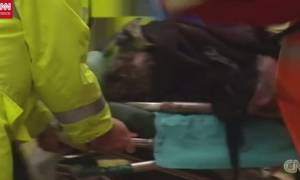 Τρομοκρατικές επιθέσεις: Η ανατομία του τρόμου σε ένα video