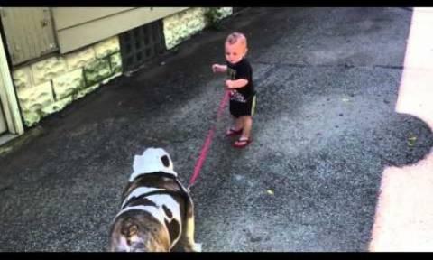 Η προσπάθεια του μικρούλη να βγάλει το σκύλο βόλτα είναι ό,τι πιο γλυκό θα δείτε σήμερα! (video)