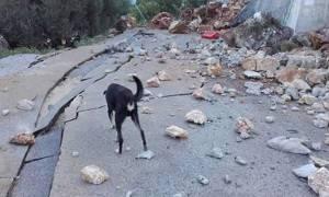 Σεισμός Λευκάδα: Σε κατάσταση έκτακτης ανάγκης, κλειστά τα σχολεία, αρχίζει η καταγραφή των «πληγών»