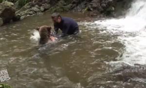 Μια αρκούδα και ένας εξερευνητής συναντιούνται στο ποτάμι και... (video)