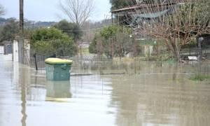 Πρέβεζα: Ποτάμια οι δρόμοι από την ισχυρή βροχόπτωση