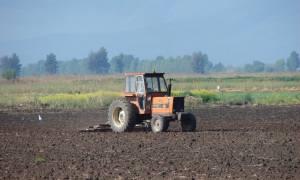 Την ερχόμενη εδβομάδα θα πληρωθεί το 90% των αγροτικών επιδοτήσεων